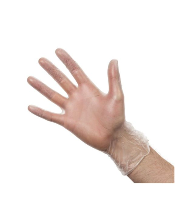 Vinyl Gloves Clear Powdered